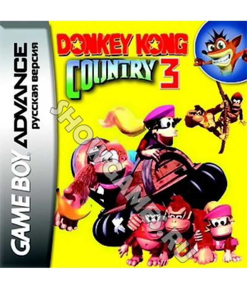 Donkey Kong Country 3 [GBA]