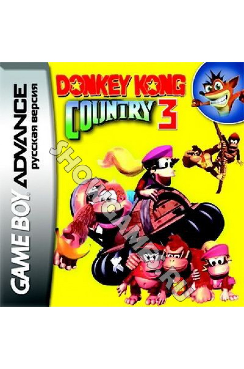 Donkey Kong Country 3 [GBA]